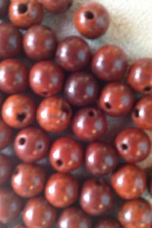 Lotus Seed Brown